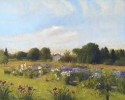Iris Garden 4