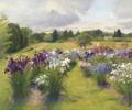 Swath of Iris
